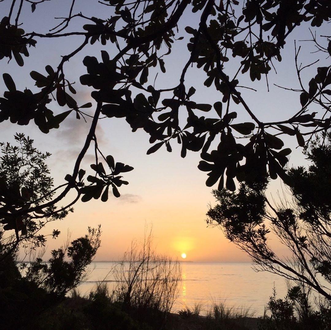 Seaberry-studio-sunset-photo