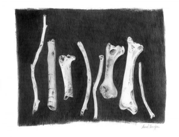 Seaberry-studio-art-print-sticks-bones